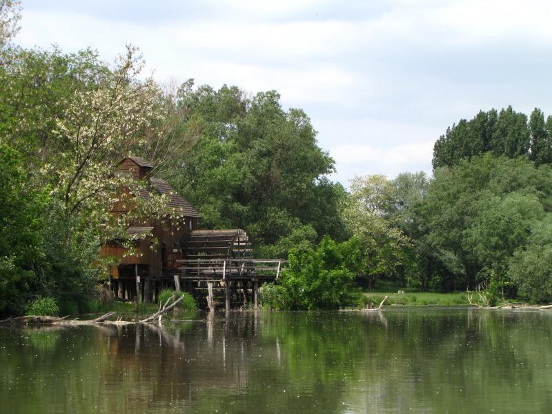 Boat4u - požičovňa lodí na Malom Dunaji