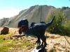 Z Bolívie do Ria - pre trekerov a horolezcov