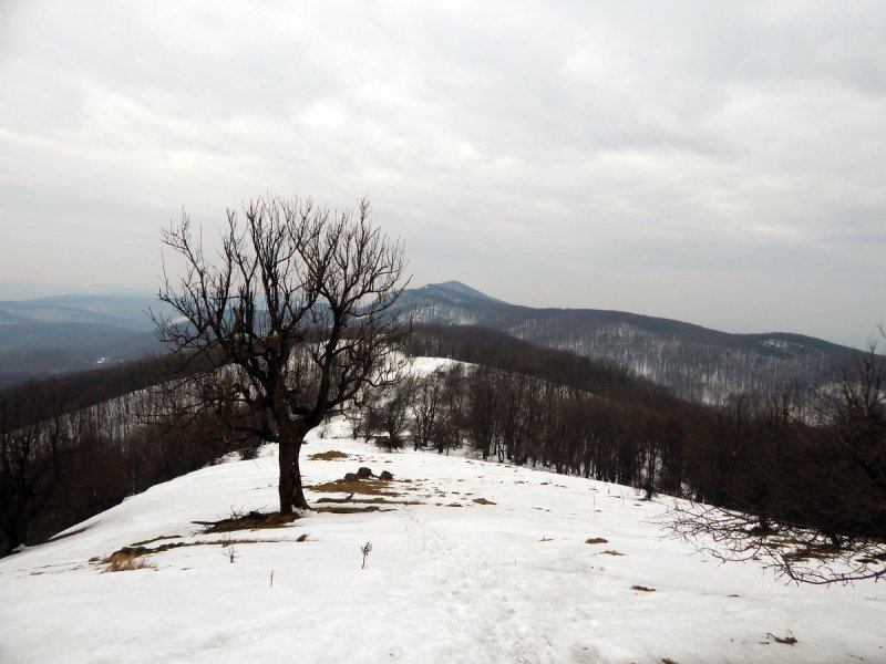 Pohľad z Klokoča na Roštún