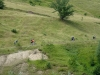 V Bosne ako vo sne